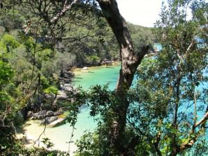 Australien_Sydney_manly_scenic_walkway
