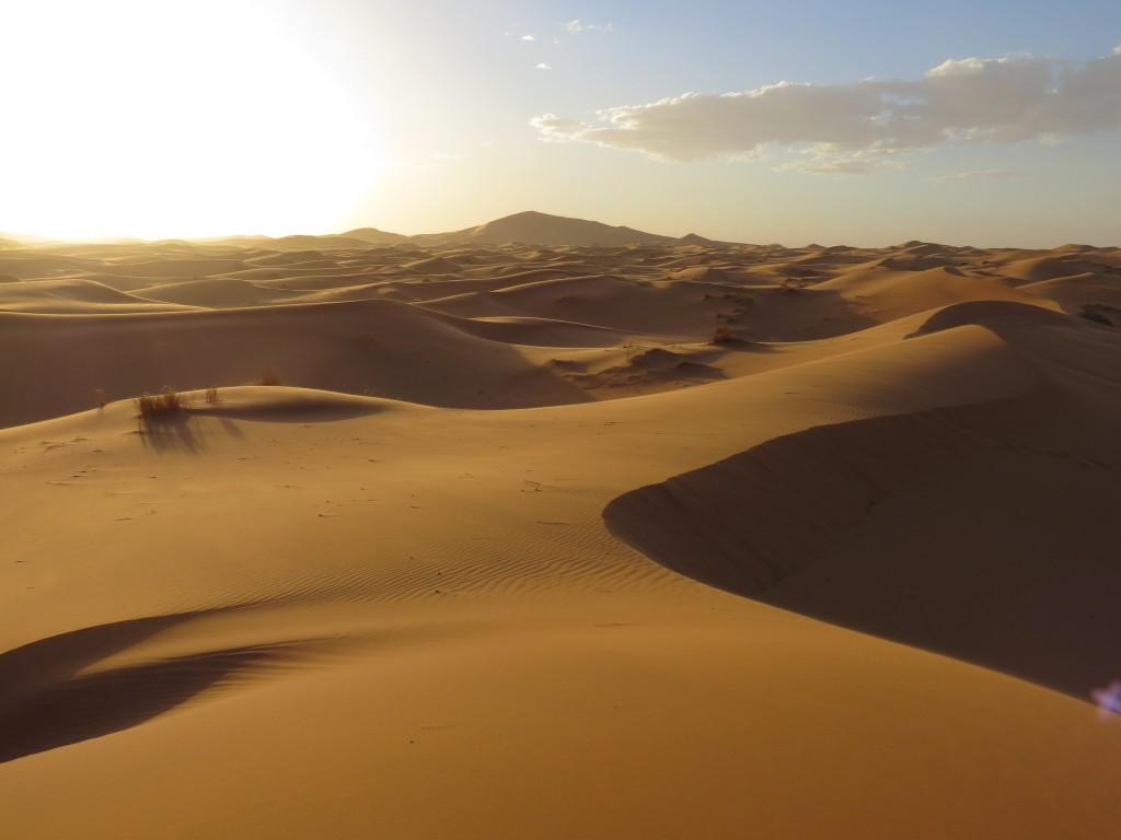 Wüste, wohin das Auge reicht...