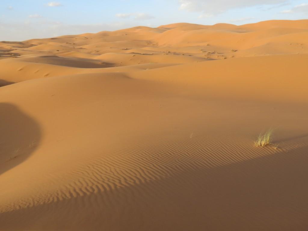 Nichts als Sand...
