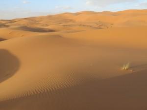 Marokko erleben Rundreise Wüste Sahara