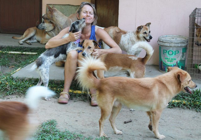 Thailand_Chiang_Mai_help_for_dogs_9