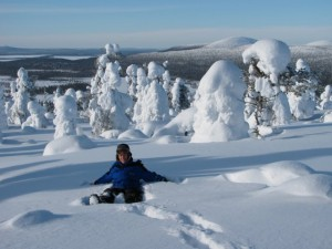 Lappland im Winter Pallas Ylläs Nationalpark