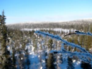 Lappland im Winter Eis