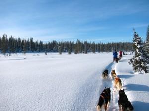 Lappland_Finnland