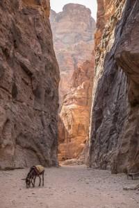 Petra in Jordanien Insider Tipps