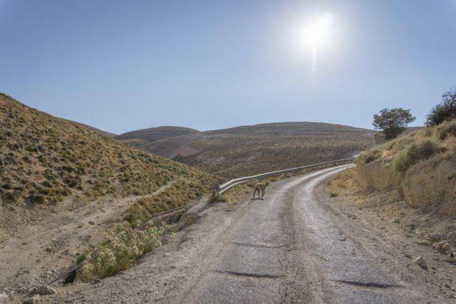 Jordanien Rundreise Urlaub Landschaft