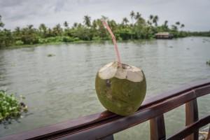 Kerala Backwaters Indien Hausboot