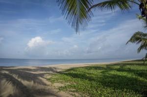 Kerala Backwaters Indien Marari Beach