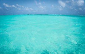 Belize Blue Hole La Beliza Island Resort Ambergris Caye