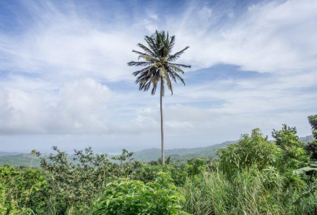 Reiseziele Maerz Urlaub Dominikanische Republik