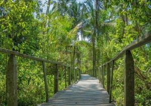Costa Rica Puerto Viejo Cahuita Nationalpark