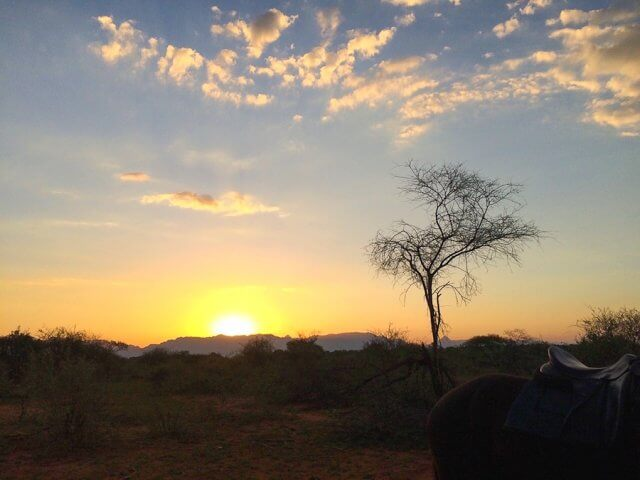 pferdesafari-suedafrika-12