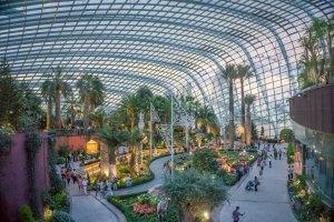 Singapur Sehenswuerdigkeiten Flower Dome