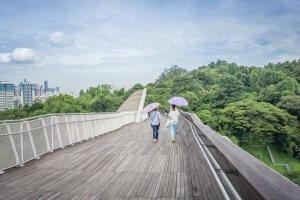 Singapur Sehenswuerdigkeiten Henderson Waves Bridge Southern Ridges Trail