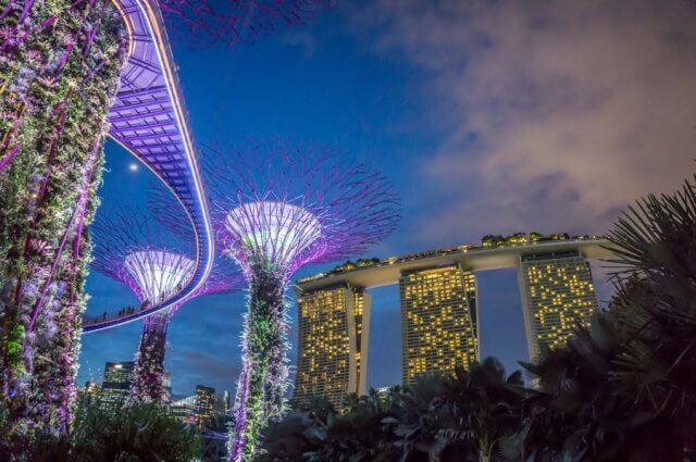 Singapur Sehenswuerdigkeiten Supertrees bei Nacht