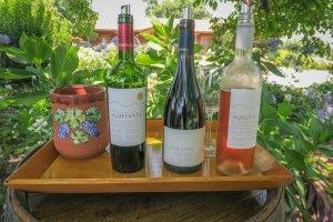 Santiago de Chile Weinprobe