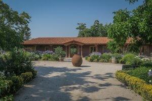 Santiago de Chile Weingut