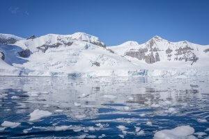 Antarktis Hurtigruten MS Midnatsol Cuverville Island