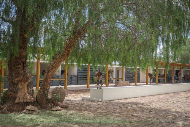 Atacamawüste Explora Stallungen