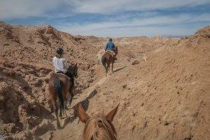 Atacamawüste Explora Reiten Chile