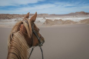 Atacamawüste Reiten Valle de la Luna