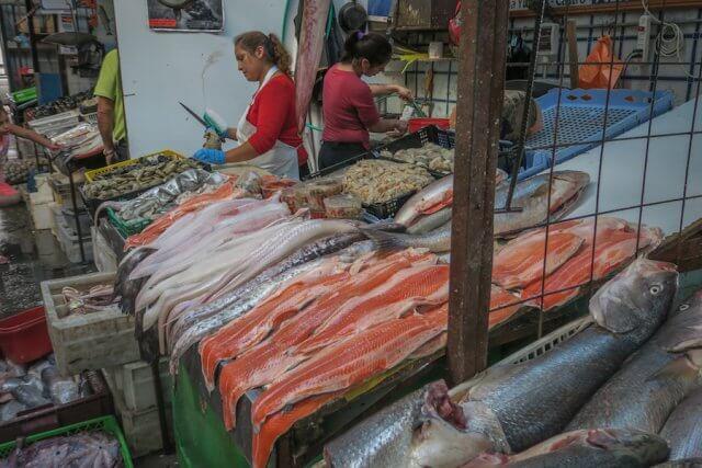 Chiloe Chile Markthalle frischer Fisch