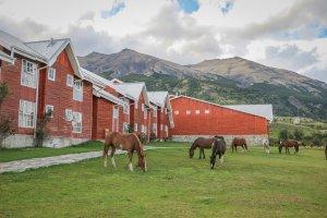Torres del Paine Chile Hotel Las Torres Pferde