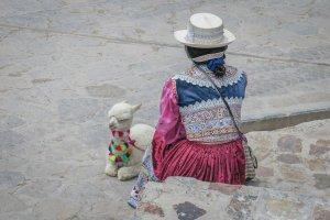 Arequipa Colca Canyon Babylama