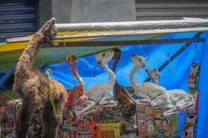 La Paz Titikakasee Hexenmarkt