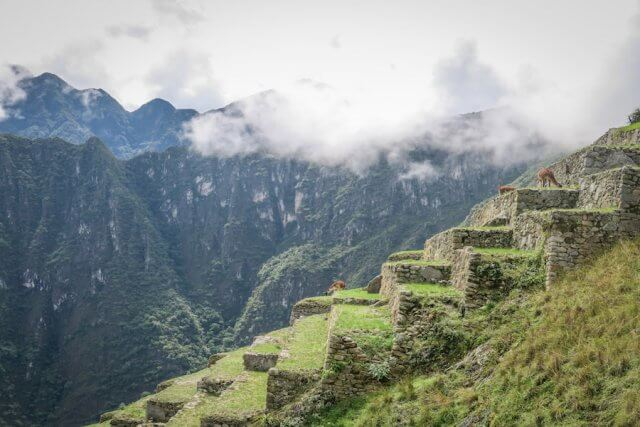 Lares Trek Machu Picchu Peru Terrassen