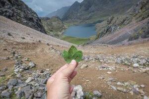 Lares Trek_Machu Picchu_Peru höchster Punkt Lagune