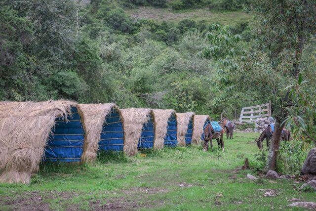 Lares Trek_Machu Picchu_Peru Camp