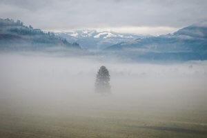 Zell am See-Kaprun Oesterreich Nebel