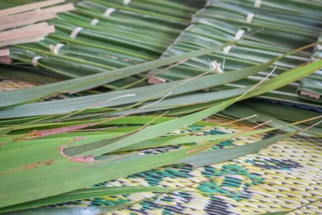 Phang Nga Thailand Homestay Talaenok Ecotour