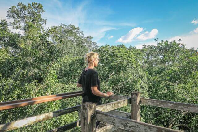 Puerto Maldonado Dschungel Peru Lima Inkaterra Amazonica Canopy