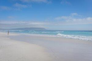 Suedafrika Noordhoek Beach