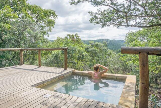 Suedafrika Phinda AndBeyond Private Game Reserve Safari