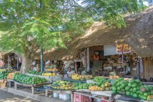 Suedafrika St Lucia