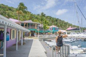 British Virgin Islands Karibik Britische Jungferninseln Tortola Sopers hole Wharf Marina