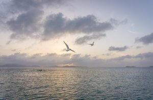 British Virgin Islands Karibik Britische Jungferninseln Virgin Gorda Sonnenuntergang