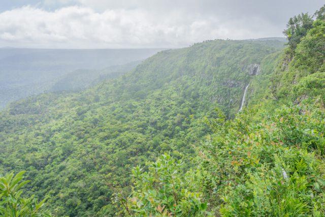 Mauritius Sehenswuerdigkeiten Black River Gorges Nationalpark