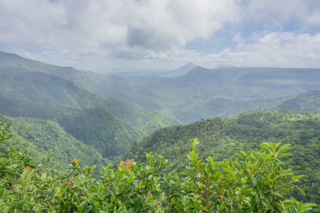 Mauritius Sehenswuerdigkeiten Black River Gorges Nationalpark Viewpoint