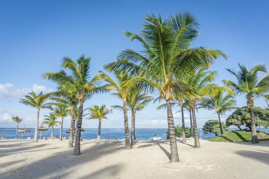 Vitamin World Long Island