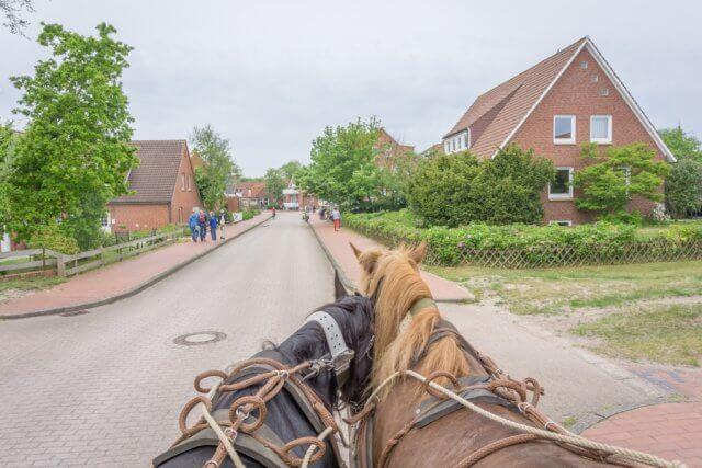 Insel Juist Nordsee Urlaub Pferdekutsche