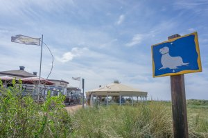 Insel Juist Nordsee Urlaub Strandhalle
