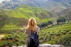 Urlaub Reiseziele August Cameron Highlands Malaysia