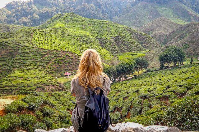Urlaub im August Cameron Highlands Malaysia Reiseziele August Urlaub