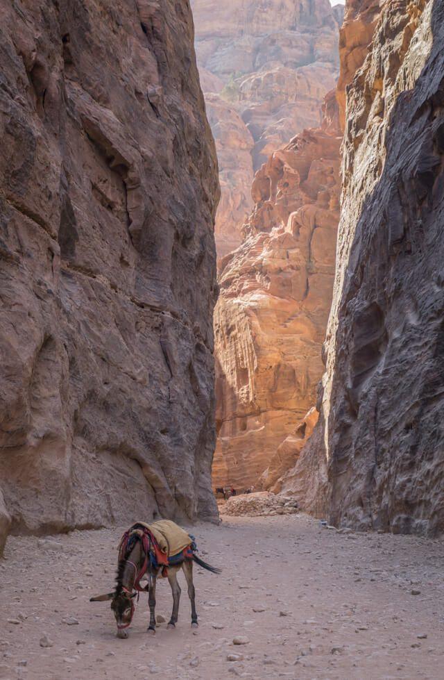 Jordanien Rundreise Urlaub Felsenstadt Petra Siq