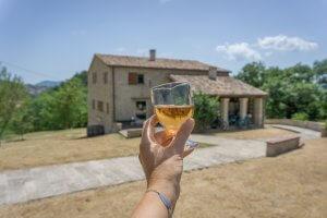 San Marino Wein