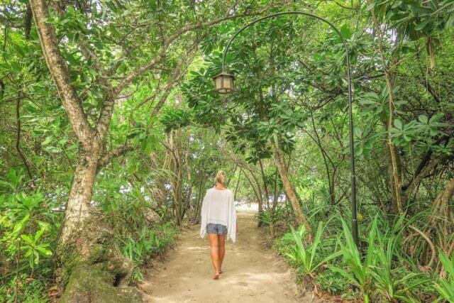 Malediven Inseln Reethi Beach Dschungel